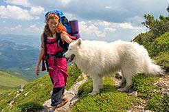 Urlaub mit Hund in der Schweiz - Infos hier