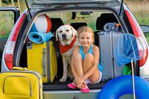 Anreise in die Schweiz im Auto mit Hund