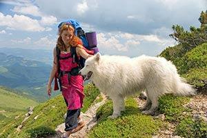 Einreisebestimmungen für Hunde in die Schweiz