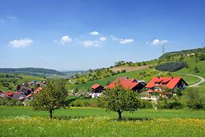 PLZ der Schweiz - Landschaft mit Häusern