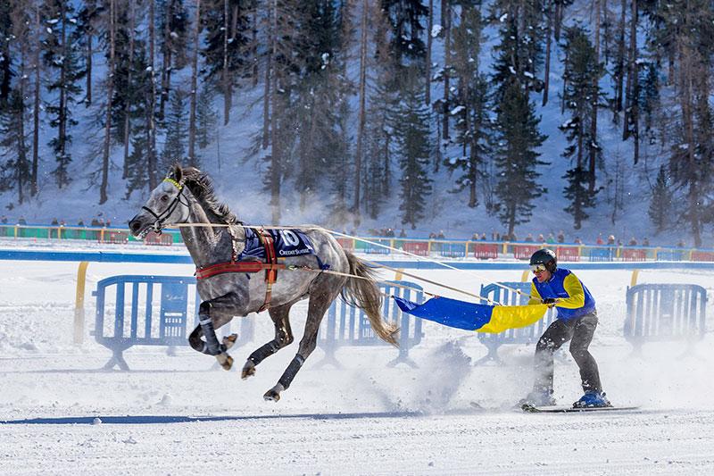 Pferdesport in St. Moritz